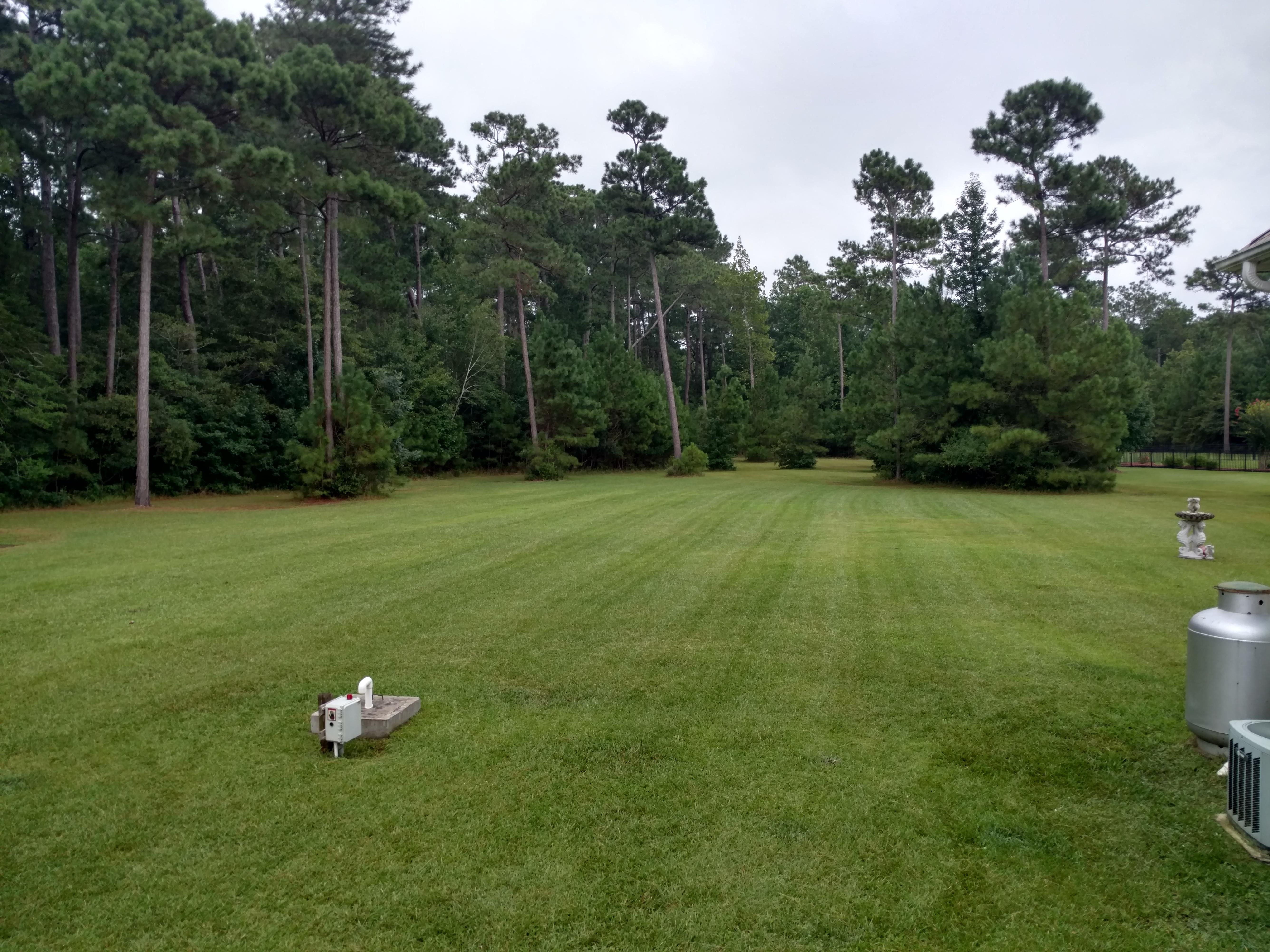 lawn service yard mowing