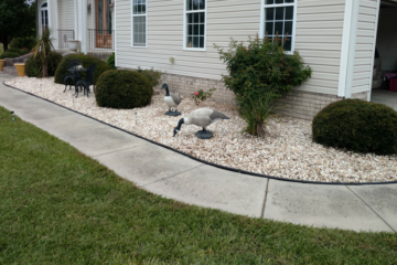 Yard Clean Up | Spring and Fall